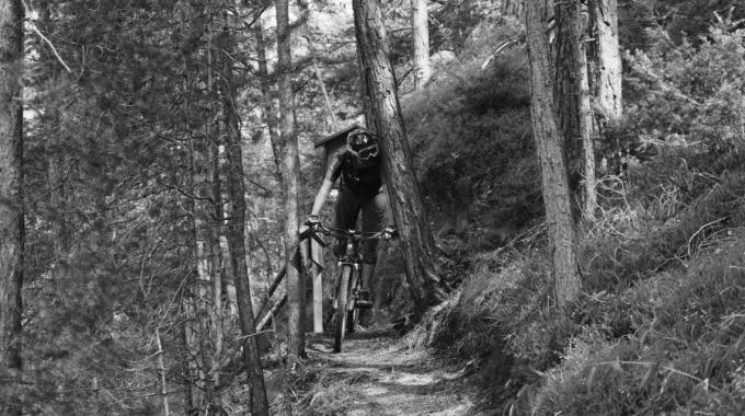 """""""TTT"""" Tiroler Trail Trip !"""