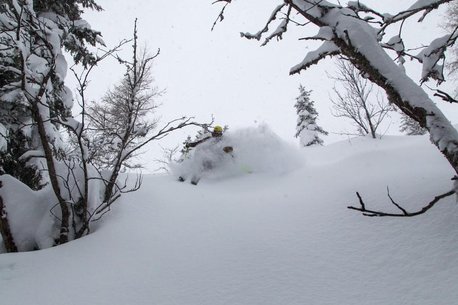 Tyrol Powder !