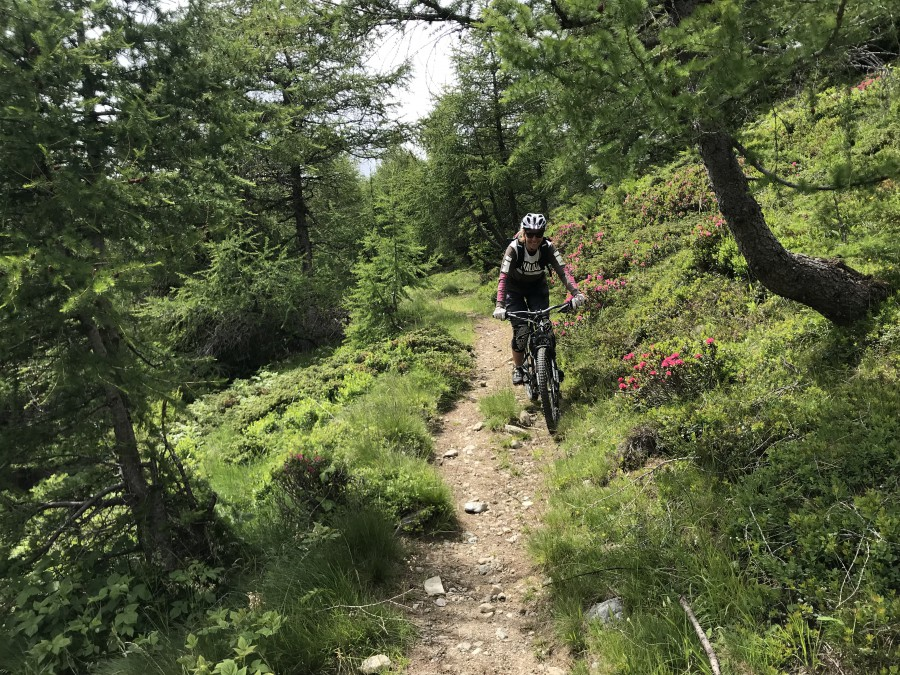 Bikeguiding Impressionen